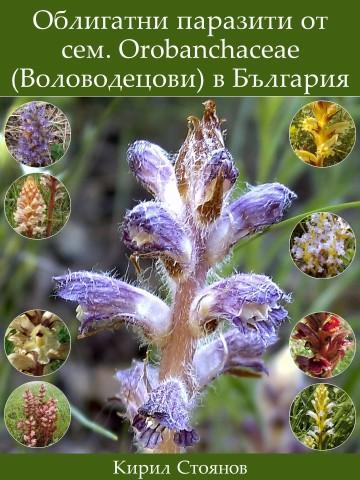 Стоянов 2002. Облигатни паразити от сем. Orobanchaceae (Воловодецови) в България